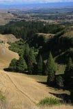 Sikt från Te Mata Peak, Napier arkivfoto