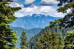Sikt från uppe på skogshönsberget Royaltyfria Foton