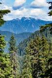 Sikt från uppe på skogshönsberget, lodlinje Arkivbild