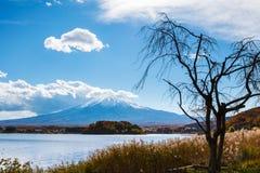 Sikt för Mt Fuji från sjön Arkivbilder