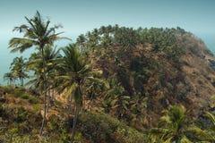 Sikt från Cabo De Rama Fort. Goa Indien Royaltyfri Foto