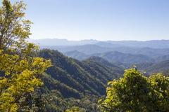 Sikt in i den Samoeng skogen Fotografering för Bildbyråer