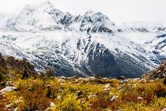 Sikt i höglandet, Tibet, Kina royaltyfri fotografi