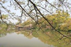 Sikt i kulturellt landskap för västra sjö av Hangzhou royaltyfri bild