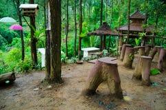 Sikt i mitt av pinjeskogen Arkivbild