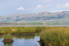 Sikt in mot beskickningmaximum; vattenvägar på; Don Edwards Wildlife Refuge södra San Francisco Bay, Alviso, San Jose, Kalifornie royaltyfria bilder