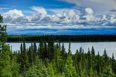 Sikt in mot den tomma kabinen i skogen i Alaska Förenta staternanolla Royaltyfria Bilder