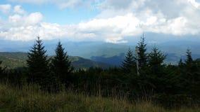 Sikt nära toppmötet på gamla Mitchell Trail i delstatspark för Mt Mitchell nära Marion NC Royaltyfri Fotografi