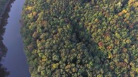 Sikt ner Flyga över skogen och floden copter stock video