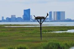 Sikt på Atlantic City Royaltyfria Foton