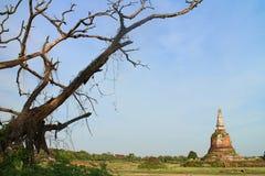 sikt på ayudthaya Fotografering för Bildbyråer