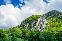 Sikt p? berget med skogen p? den och molnig himmel arkivfoto