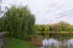 Sikt på dammet i Moskva Arkivfoton