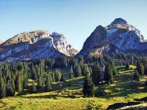 Sikt på de alpina maxima Schibenstoll och Zuestoll i den Churfirsten bergskedjan arkivfoto