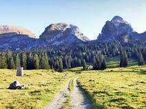 Sikt på de alpina maxima Schibenstoll och Zuestoll i den Churfirsten bergskedjan royaltyfri foto