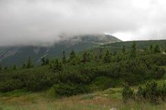 Sikt på den ÅšnieÅ ¼kaen, jätte- berg, Polen Royaltyfria Bilder