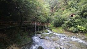 Sikt på den bergfloden och bron lager videofilmer