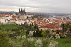 Sikt på den vårPrague staden med den gotiska slotten, den gröna naturen och blomningträd, Tjeckien Arkivbild