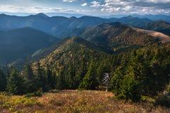 Sikt på den Velka Fatra nationalparken Arkivfoto