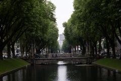 Sikt på en allee som omges av träd i düsseldorf Tyskland royaltyfria bilder