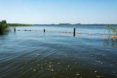 Sikt på en av Frisian sjöarna i Nederländerna fotografering för bildbyråer
