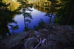 Sikt på en skogsjö i höst, Finland Fotografering för Bildbyråer
