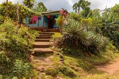Sikt på ett bostads- hus från vägen i nationalpark för alejandrode humboldt nära baracoaen Kuba royaltyfri foto