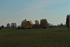 Sikt på fältet och huset för höst som det tomma omges av träd Royaltyfri Bild