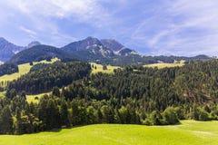 Sikt på fjällängarna, Schweiz Arkivfoton