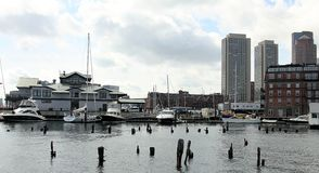 Sikt på flotta och segelbåtar från den Boston hamnen royaltyfri fotografi