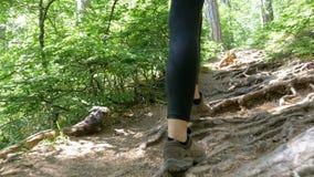 Sikt på fot av handelsresandekvinnan som fotvandrar på skogslingabanan i berg stock video