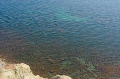 Sikt på genomskinligt turkoshavsvatten med havsväxt Arkivbild