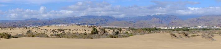 Sikt på laen Charca för naturlig reserv på Maspalomas, Gran Canaria, Spanien Royaltyfri Fotografi