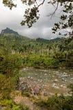 Sikt på nationalparkalejandroen de humboldt med flodKuba arkivfoton