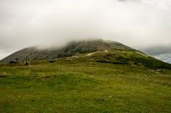 Sikt på väg till den ÅšnieÅ ¼kaen, jätte- berg, Polen Royaltyfria Bilder