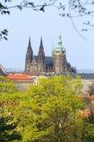Sikt på vårPrague den gotiska slotten med de gröna natur- och blomningträden Royaltyfri Fotografi