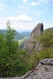 Sikt på dalen - Trnovo platå Slovenien Royaltyfri Fotografi