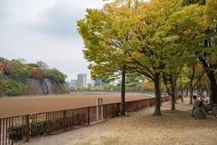Sikt runt om den Osaka slotten Arkivfoto
