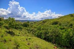 Sikt till djungeln i bergen av Puerto Plata, dominikan R fotografering för bildbyråer