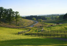 Sikt till en hästlantgård Royaltyfri Bild