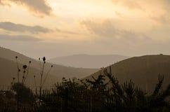Sikt till en härlig regnig morgon på soluppgången Arkivfoto