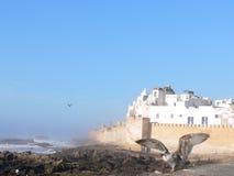 Sikt till Essaouira (Marocko) Royaltyfri Foto