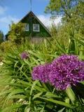 Sikt till ett lantligt hus från trädgården Royaltyfri Bild