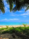 Sikt till och med palmträden över en tropisk lagun för turkos Fotografering för Bildbyråer