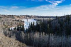 Sikt till River Valley i den tidiga våren, Edmonton, Alberta Arkivfoto