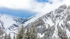 Sikt till schweiziska fjällängar i Adelboden, Schweiz stock video