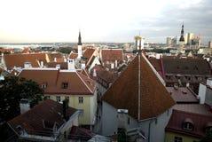 Sikt till Tallinn royaltyfri bild
