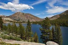 Sikt till Tioga sjön på den Yosemite nationalparken Fotografering för Bildbyråer