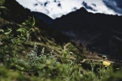 Sikt uppifrån av berget av Pisaq Royaltyfri Fotografi