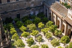 Sikt uppifrån av ett torn Giralda Royaltyfria Foton